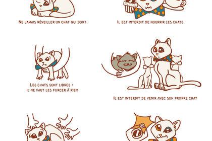 Pictogramme pour Chat Mallows Café