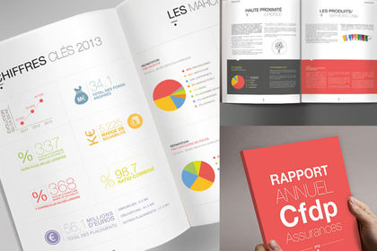 Rapport annuel Cfdp