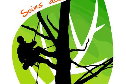 Logo Benjamin JOUAN - Soins aux arbres