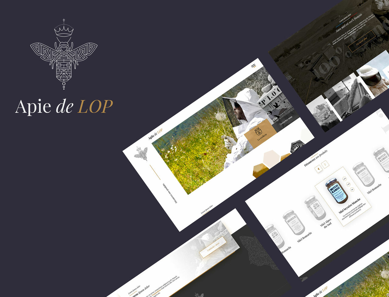 Apie de LIP - Webdesign
