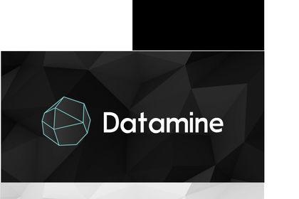 DATAMINE | Identité visuelle