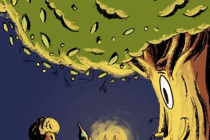Livre 'olivier l'olivier'