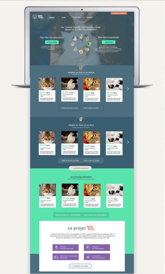 Webdesign - 1Animal1Famille