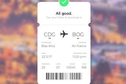 Flight Ticket Concept
