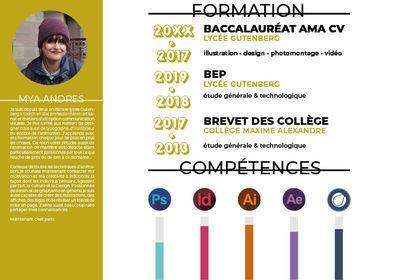 CV p.02