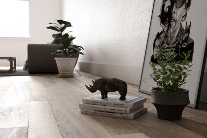 Salon Rhinocéros