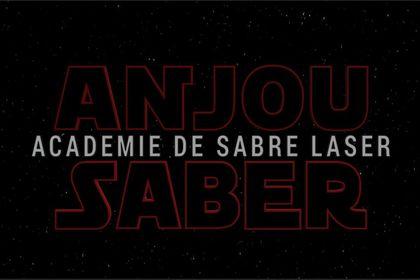 Anjou Saber