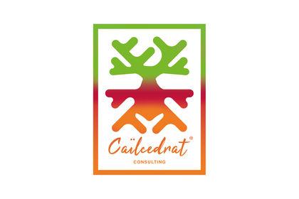 Logo Caïlcedrat Consulting