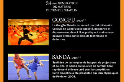 Flyer France Shaolin