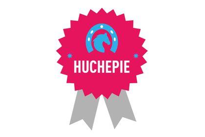 """Logo du """"Centre Équestre Huchepie"""""""