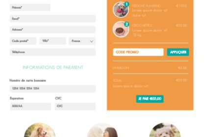 Webdesign paiement Anizoo