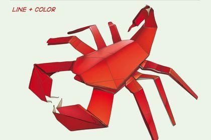 Origami d'un scorpion réalisé sous illustrator CS4