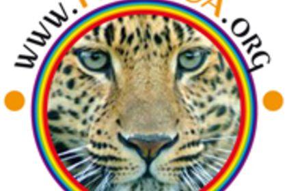 Logo FEMOCA
