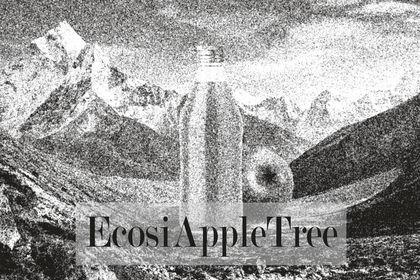 ECOSIAPPLETREE #1