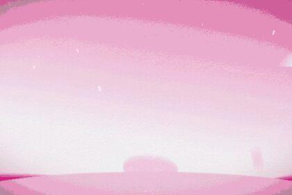 Réalisation #255650