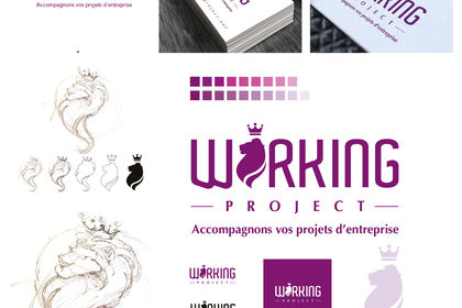 WORKING PROJECT
