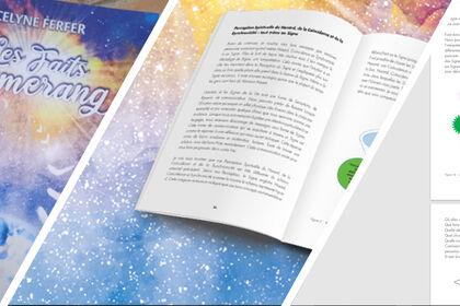 Mise en page [intérieur] livre Les faits boomerang