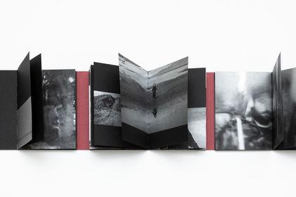 Dreamers - Shirin Neshat
