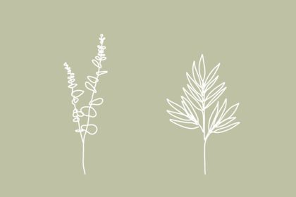 "Illustration plantes ""one-line"""