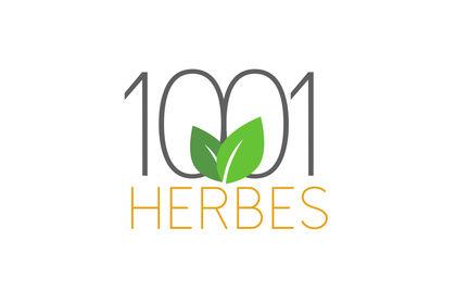 1001 Herbes - Concept de logo