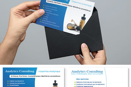 Flyer Analytics consulting
