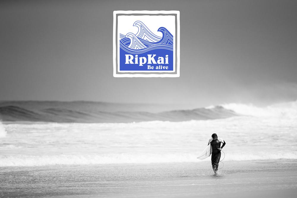 Création du logo de Ripkai