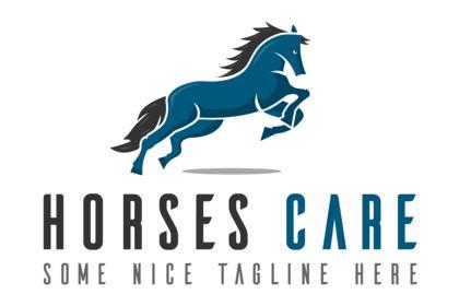 Horses Care