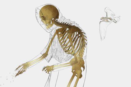 L'envers du décors / Squelette