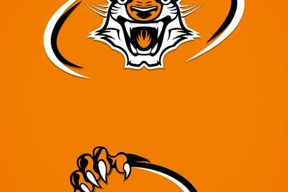Tigres de Nantes - Rugby Club
