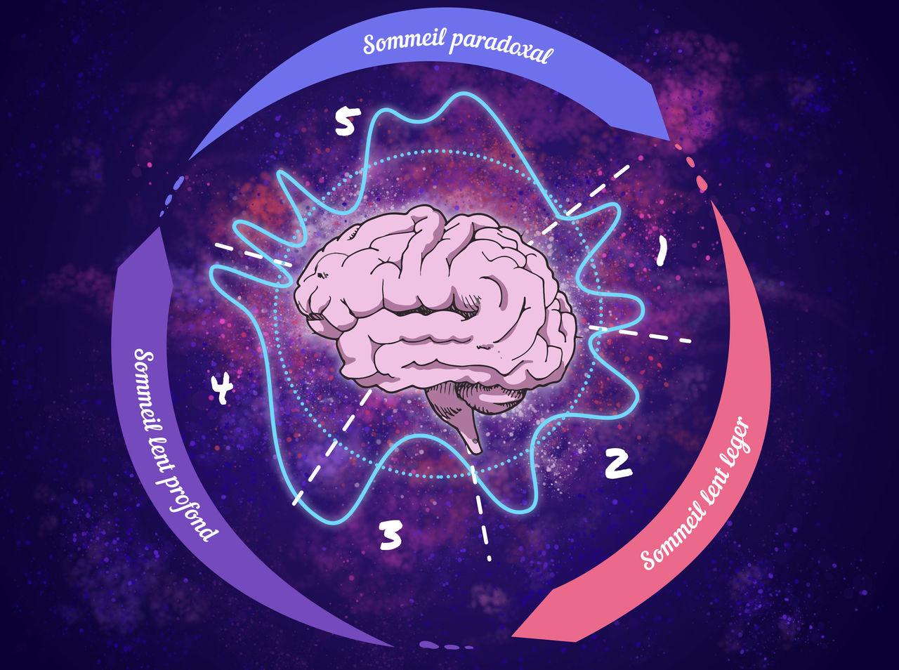 Illustration pour magazine de science