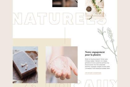 Maison Marius - Site web