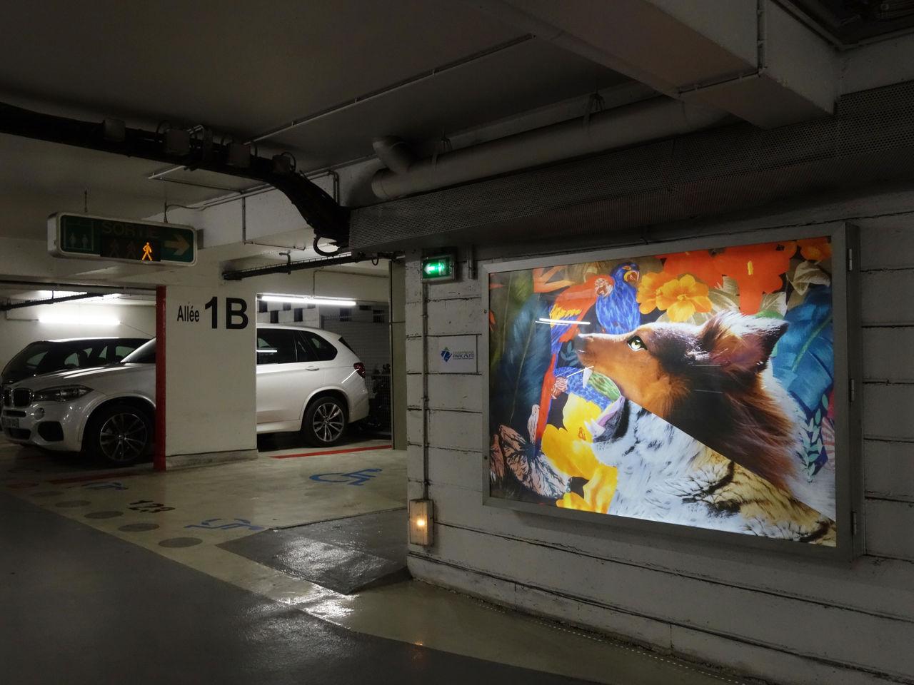 Exposition parking Buirette , « La jungle »