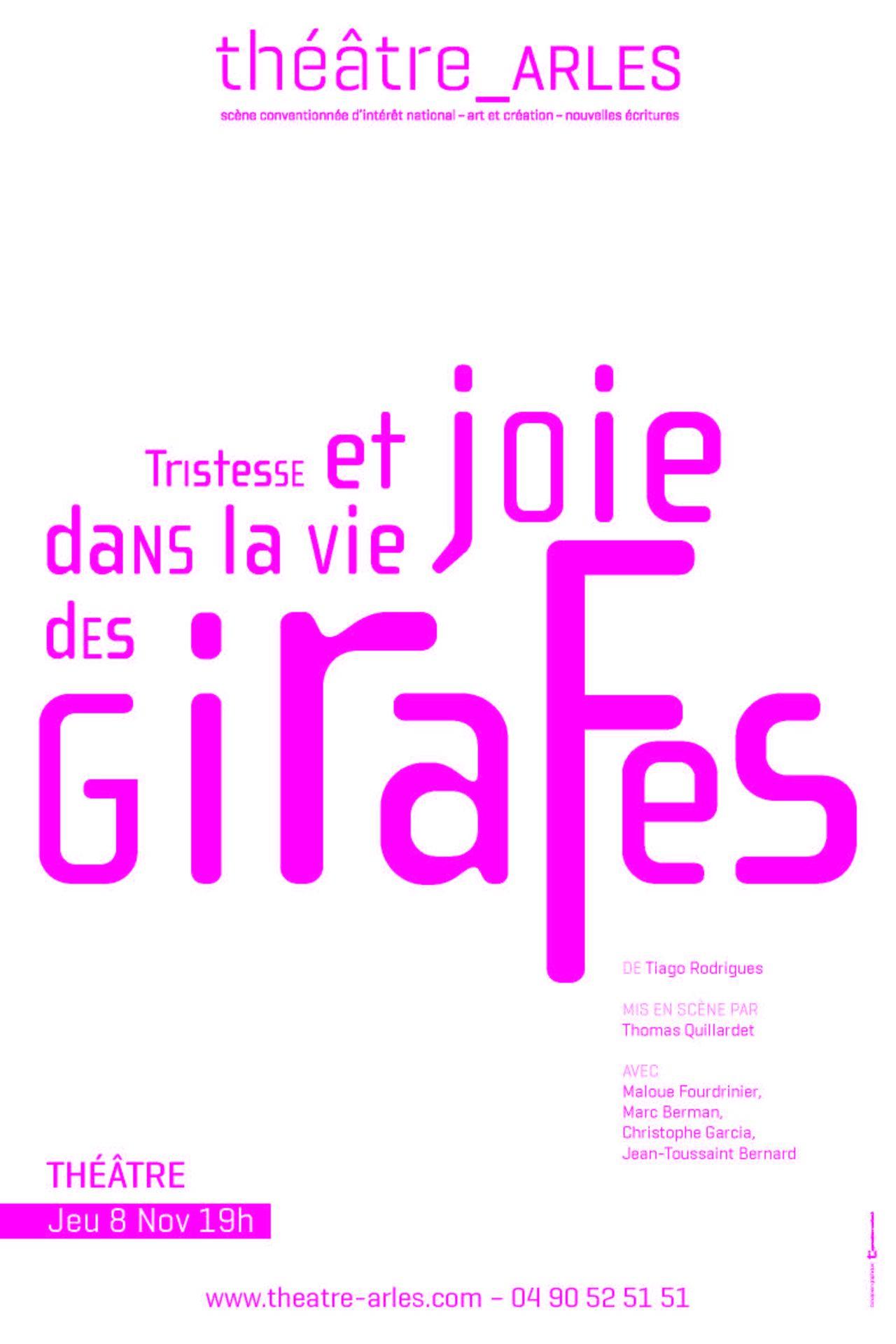 Affiche spectacle Théatre d'Arles, saison 2018-19