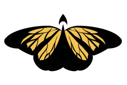 Boosterfly logo
