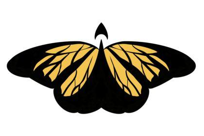Boosterfly logo