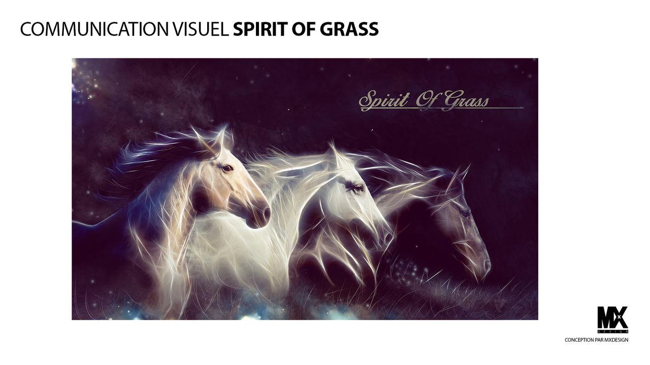 COMMUNICATION VISUELLE SPIRIT OF GRASS
