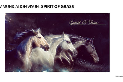 COMMUNICATION VISUELLE SPIRIT OF GRASS