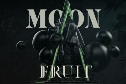Moon Fruit - Vins & Spiritueux