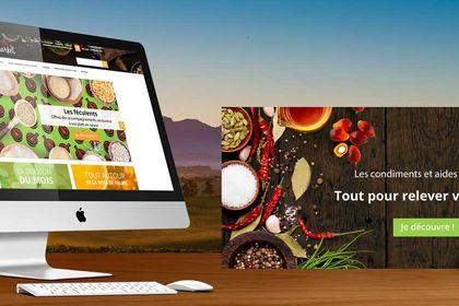 Webdesign Site de vente en ligne