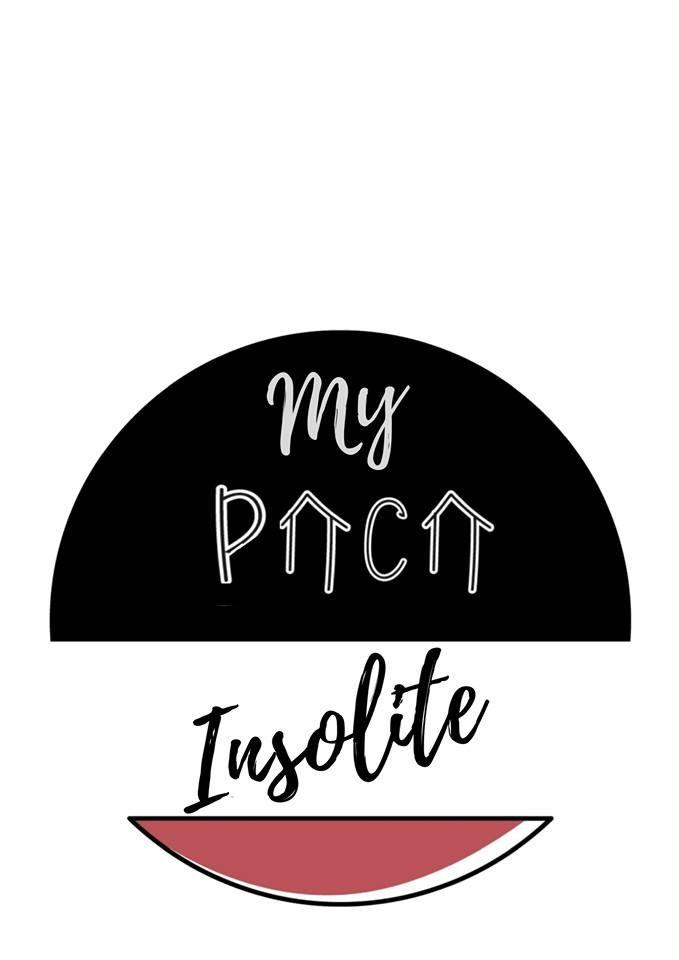 Réalisation logo my paca insolite