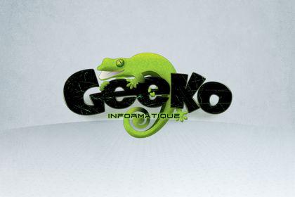 Geeko informatique