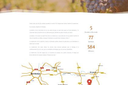 Landing Page Site TSO