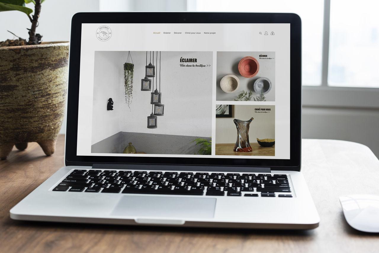 Site internet www.zosteropsdesign.com