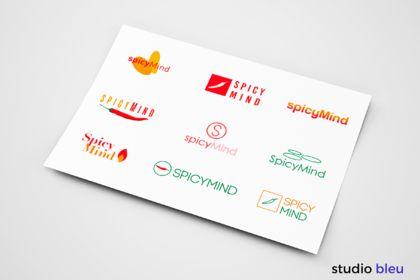 Réalisation du logo de SpicyMind