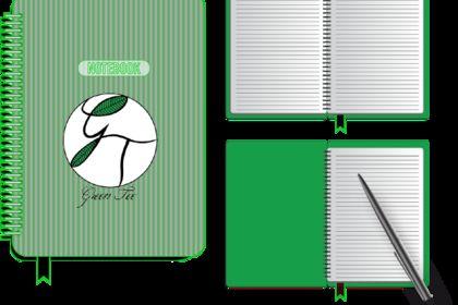 Déclinaison logo GT