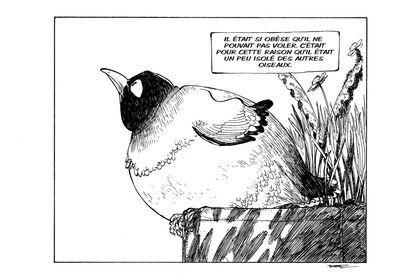 L'oiseau sans vol