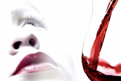 Le Feminalise , guide de vins