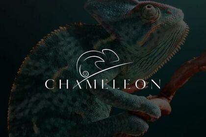 Chameleon : logo design concept