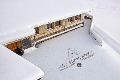 Logo Les Marmottes