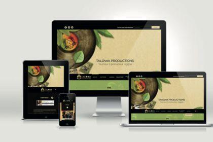 Refonte du site web Talowa